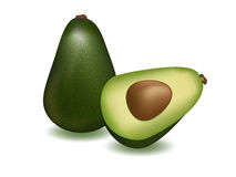 Avocado. Vector illustration. ripe avocado on white background Royalty Free Stock Photos