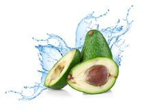 Avocado with water splash Royalty Free Stock Photography
