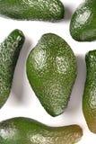 Avocado on white background - studio shot stock image