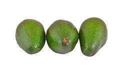 Avocado on white Stock Images