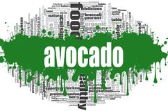 Avocado word cloud stock illustration