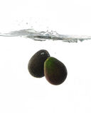 Avocadoes Splashing in water Stock Photography