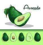 Avocadoillustratie royalty-vrije illustratie