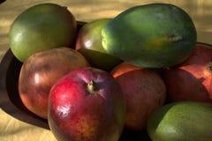 Avocadomango-Papayagranatapfel stockfotografie