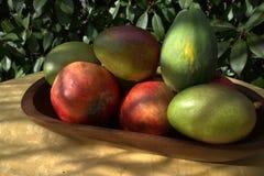 Avocadomango-Papayagranatapfel stockbilder