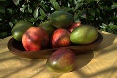 Avocadomango-Papayagranatapfel stockfotos