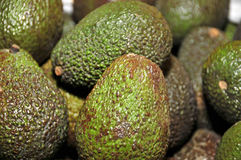 Avocados. Some ripe avocados ready to sell in a market Royalty Free Stock Images