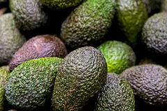 Avocados Stock Photos