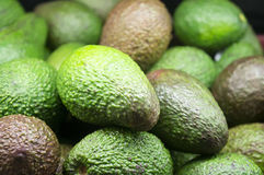Avocados Royalty Free Stock Photography