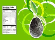 Avocados ilustracja wektor