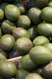 Avocados Royalty Free Stock Photos