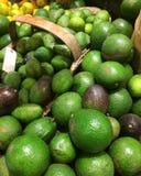 Avocados Stockbilder