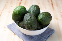 Avocados in a bowl Stock Image