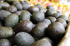 Avocados on display at market Stock Image