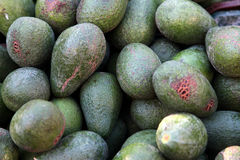Avocados on a Greek market Stock Photos