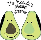 Avocados Always Greener Royalty Free Stock Images