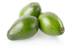 Avocados group isolated on white Royalty Free Stock Images
