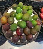 Avocados im Korb Stockbild