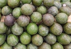 Avocados jak układający na półce sklepowej Obraz Stock