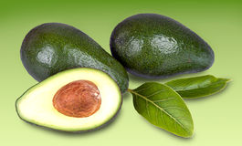 Avocados with leaves Royalty Free Stock Photography