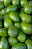 Avocados on a market Royalty Free Stock Images