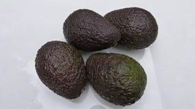 Avocados na białym tle obraz royalty free