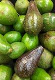 Avocados przy sklepem spożywczym Obraz Stock