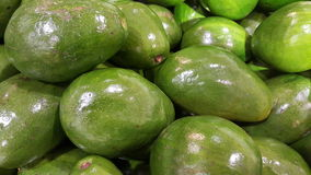 Avocados. It show a group of avocados green Royalty Free Stock Photos