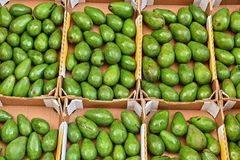 Avocados on street market stall Royalty Free Stock Photo