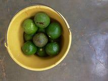 Avocados w Żółtym wiadrze z popielatym tłem zdjęcie royalty free