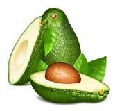Avocados z liśćmi ilustracja wektor