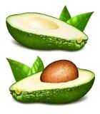 Avocados z sedno wektoru ilustracją ilustracji