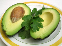 Avocat et Cilantro Photo stock