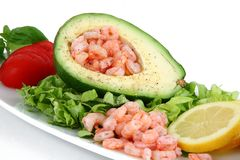 Avocat et crevettes sur le fond blanc Images stock