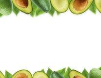Avocat frais avec des feuilles sur le fond blanc Photo libre de droits