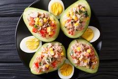 Avocat mûr avec de la salade du thon et des légumes en gros plan Horiz image libre de droits