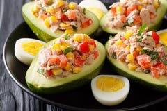 Avocat mûr avec de la salade du thon et des légumes en gros plan Horiz photos stock