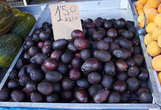 Avocat pourpre délicieux sur le marché de dimanche en Espagne, Mercadillo de Campo De Guardamar Images stock