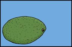 Avocat simple Image stock
