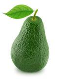 Avocat vert avec la feuille d'isolement sur un blanc Images stock