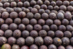 Avocats à un marché au Mexique Image libre de droits