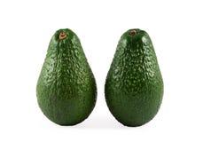 Avocats Photo stock