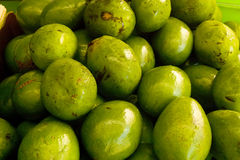 Avocats Photographie stock