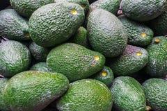 Avocats image stock
