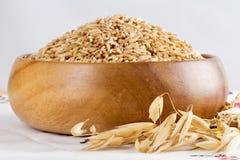 Avoine dans un bol en bois et des épis d'avoine de blé Images stock