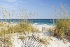 Avoine de mer et eaux de turquoise Images stock