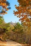 Avoir le coucher du soleil de feuilles de crête et de rouge de la montagne de Zu d'automne Images stock