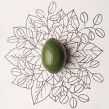 Avokado över blom- bakgrund för översikt Arkivbilder