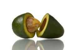 avokado royaltyfri fotografi