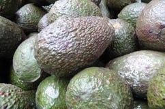 Avokado i den tegucigalpa Honduras marknaden Arkivbild